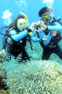 scuba_dive_resort_scuba_diving_how_to_resoet_scuba_dive_great_barrier_reef_experience_cairns_dive_australia