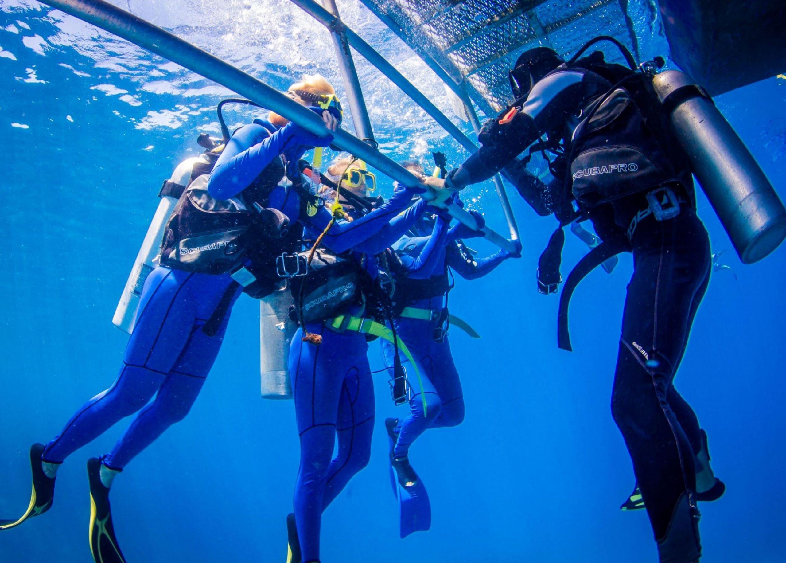 resort diving